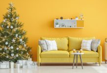 What is the best Christmas tree to buy guide