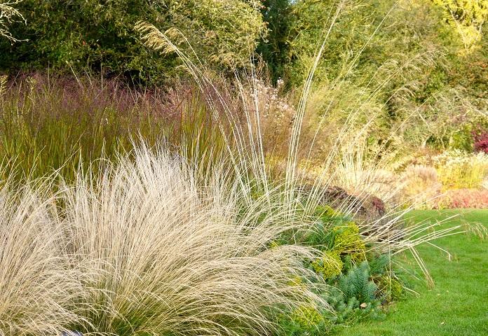 autumn gardening ideas
