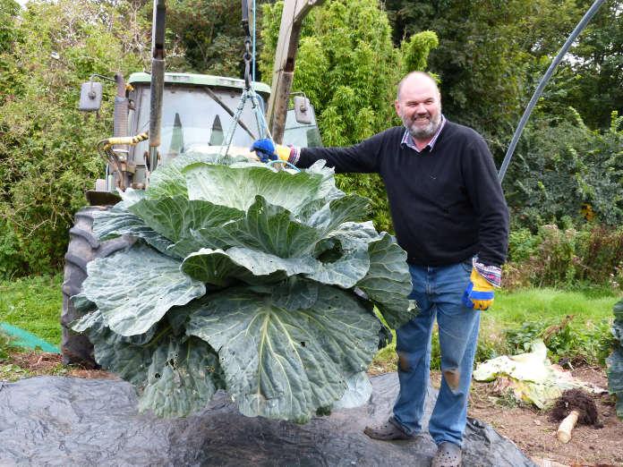 David Thomas giant veg grower