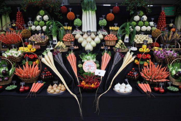 A selection of impressive vegetables (Malvern Autumn Show/PA)