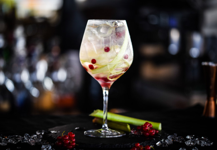 tonic gin cocktail with fresh rhubarb and red berries