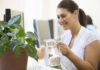 Houseplants for home office boost productivity