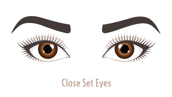 Close set eyes illustration