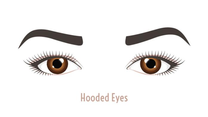 Hooded eyes illustration