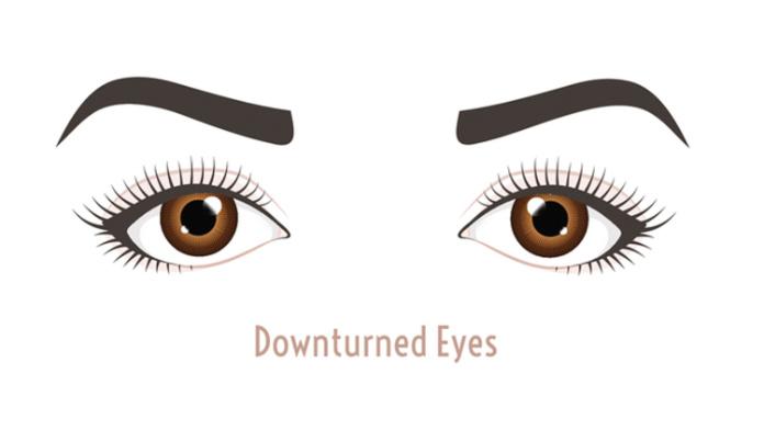 Best eyeliner downturned eyes illustration