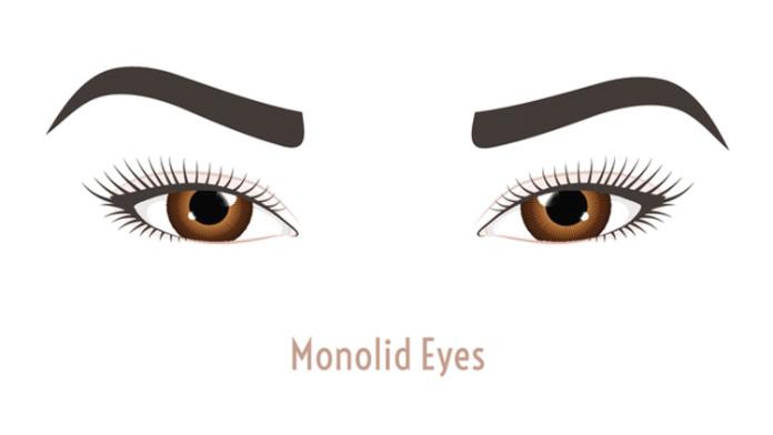 Monolid eyes illustration