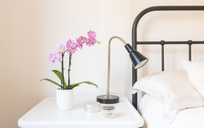Close up of purple orchid in white pot on side table