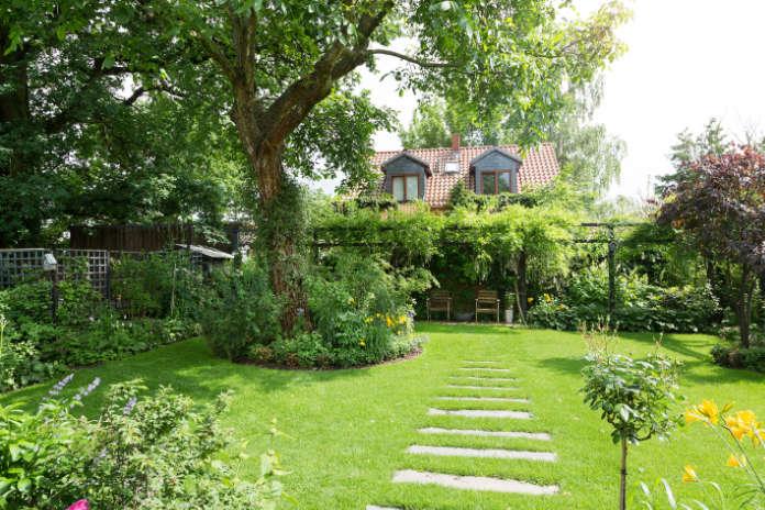 Outdoor living greenery in garden