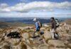 Walk for wellness in the Cairngorm National Park