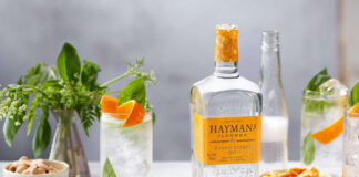 Alcohol gifts Hayman's Exotic Citrus Gin with a gin & tonic