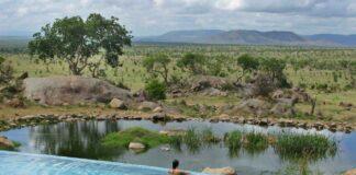 Infinity pool holidays A swim with a view: Four Seasons Safari Lodge Serengeti