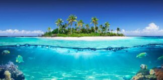 Tropical Island with coral reef
