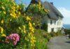 Seaside garden ideas