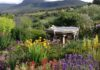 A beautiful garden to visit