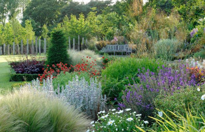 A beautiful garden to visit: Coldcotes Moor Garden