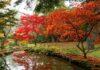 Exbury Gardens in autumn