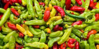 Spicy food Red and green chilli peppers